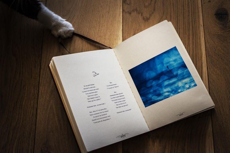 Livre Abracamera Standard - Myriam Dupouy