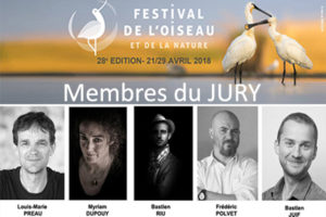 Jury - Myriam Dupouy