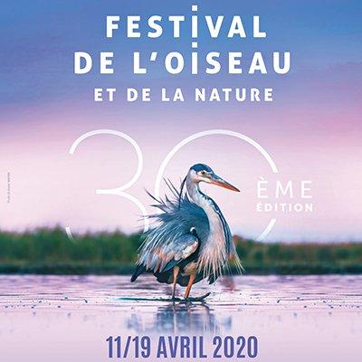 Festival de l'Oiseau - Myriam Dupouy