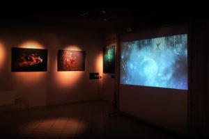 Expositions - Myriam Dupouy