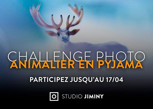 Blog Challenge Studio Jiminy - Myriam Dupouy - Animalier