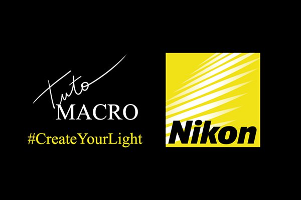 Blog Tuto Nikon Create Your Light - Myriam Dupouy