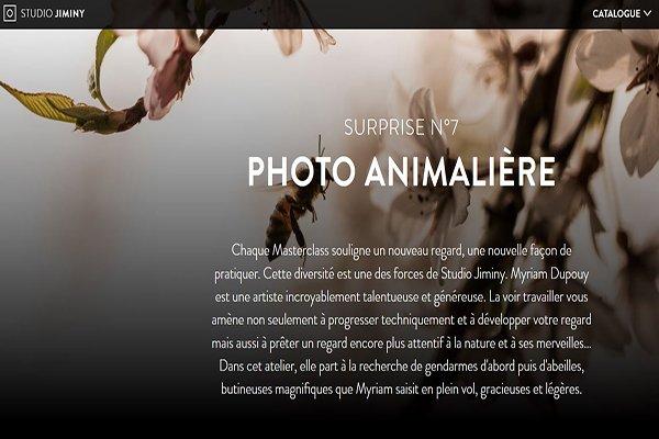 Blog - Anniversaire Studio Jiminy- Myriam Dupouy